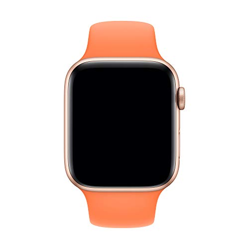 Apple Watch Sport Band (40mm) - VitaminC - Regular