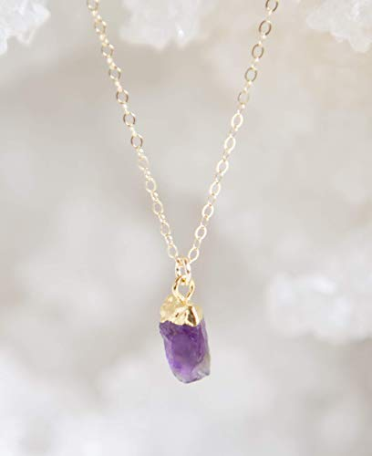 (Tiny Raw Amethyst Gemstone Gold Filled Necklace - 16