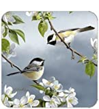 Coasters Set of Four - Birds on Branches Chickadees - Hautman Brothers & Legacy