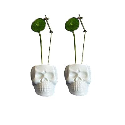Wish you have a nice day Set of 2 Modern Skull White Ceramic Succulent Planter Pots / 2 inch Tiny Flower Plant Containers (Skull) : Garden & Outdoor
