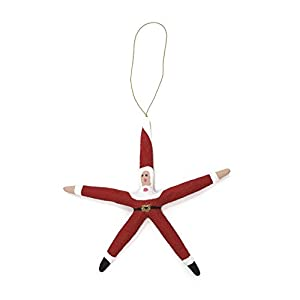 31E2ZZslkZL._SS300_ 50+ Starfish Christmas Ornaments