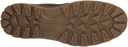 bd6fe8772071 ECCO Men s Rugged Track Gore-TEX Moc Tie Hiking Shoe