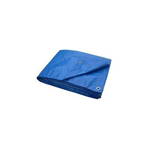 Hygrade/LDF Industries Inc 23300125 Light Duty Blue Poly Tarp 20' X 20'