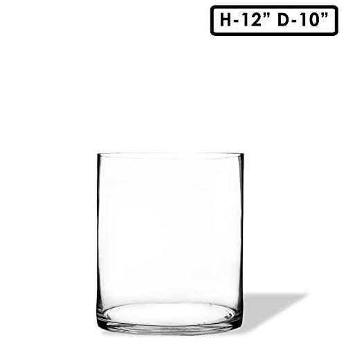 CYS EXCEL Glass Vase, Cylinder Vase, Glass Cylinder Tall Vase, 6 Size Available, (Pack of 1) (H:12