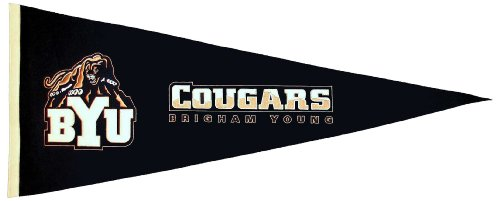 NCAA Brigham Young Cougars Medium Pennant