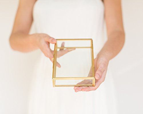 The Queen of Crowns Glass Photo Box, Proof Box, Glass Shadow Box, Gold Glass Box (4x6) by The Queen of Crowns (Image #2)'