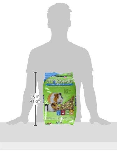 Vitakraft-Guinea-Pig-Food-High-Fiber-Timothy-Formula-1-Pouch-8-lb
