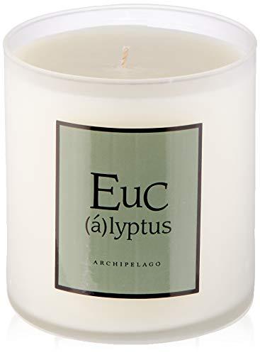 (Archipelago Eucalyptus Soy Candle)