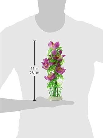 Amazon.com : eDealMax Hoja de plástico Flor de Nylon planta de acuario Decoración/Hierba, 12.2 pulgadas, púrpura/Verde : Pet Supplies