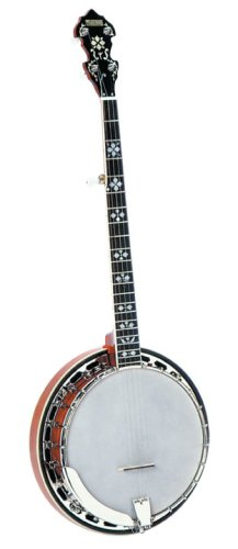 Recording King RK-R20 Songster Banjo