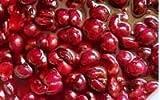 Cherry Pie Filling -26Lbs