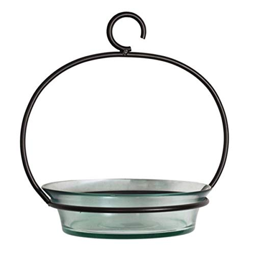 Glass Flat Bottom Hanging Wild Bird Baths G446VM Clear Decorative Birdseed Container Feeder. Romantic Decor & More