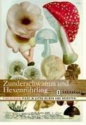 zunderschwamm-und-hexenrhrling-pilze-in-alten-bildern-und-rezepten