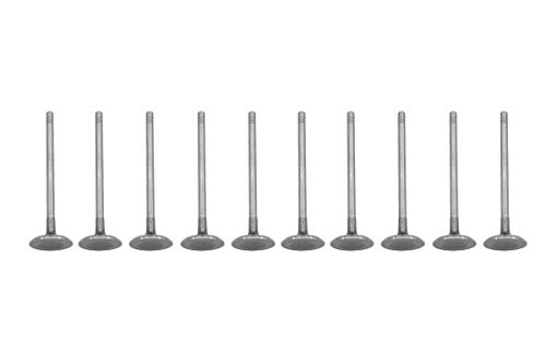 (NewYall Pack of 10 Engine Intake Valves Intervalve)