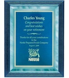 9 x 12 Blue Mirror Plaque Engraved with Blue Plate in Blue Frame by Gino's Awards Inc
