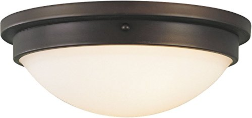 (Feiss FM228ORB Gravity Glass Flush Mount Ceiling Lighting, Bronze, 2-Light (13