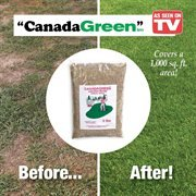 Canada Green Grass Lawn Seed - 12 Pounds by Canada Green (Image #2)