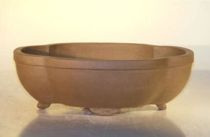 Amazon Com Bonsai Boy S Tan Unglazed Ceramic Bonsai Pot Oval 10 X 7 875 X 3 125 Home Kitchen