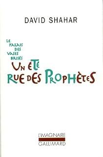 Le palais des vases brisés [1] : Un été rue des prophètes, Shahar, David