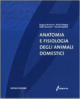 Amazon manuale di fisiologia veterinaria james g cunningham anatomia e fisiologia degli animali domestici fandeluxe Images