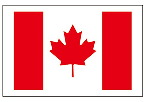 (8 Large Canada Flag Tattoos: Canadian Party)