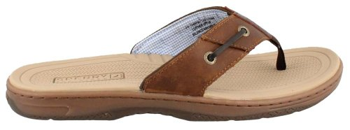 Sperry Top-Sider Men's Baitfish Thong Sandal,Brown/Buck Brown,14 M US (Sider Top Sperry Espadrilles)