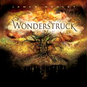Position Music Orchestral Series Vol. 7 (Wonderstruck) CD and Data DVD