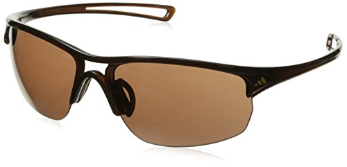adidas Raylor 2 L Non-Polarized Iridium Oval Sunglasses, Shiny Brown, 65 mm