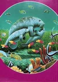 amazon com round jigsaw puzzle manatee moments 500 pieces by great