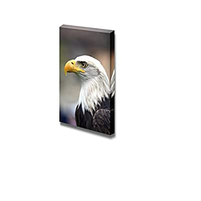 Canvas Prints Wall Art - A Beautiful American White-Headed Eagle - 18