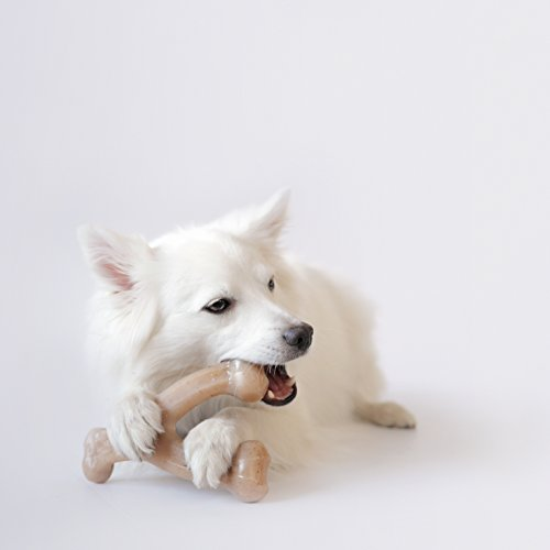 Benebone-Real-Flavor-Wishbone-Chew-Toy-Made-in-USA