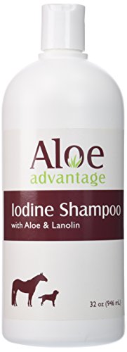 Aloe Advantage Aloe Iodine Shampoo, 32-Ounce
