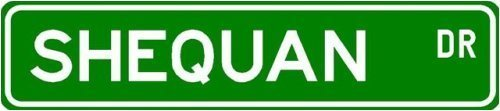 Custom Street Sign Quality Aluminum Signs Shequan Street Sign ~ Martial Arts Gift ~ 3 X 12 Inch