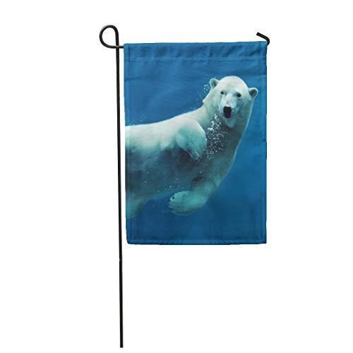 Arctic Underwater Camera - 3