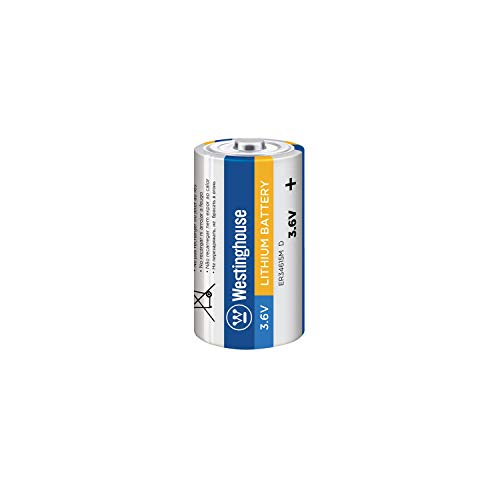 Highest Rated D Batteries