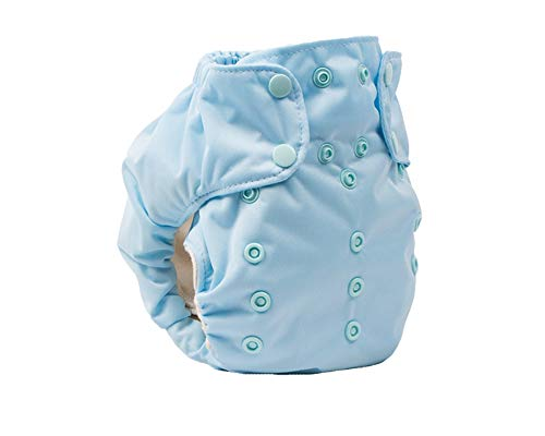 Cloth Diaper - Smart Bottoms Smart One 3.1 - All-in-One - 100% Organic Cotton Interior - 10-35lbs ... (Daydream)