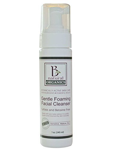 Be Natural Organics Gentle Foaming Facial Cleanser 7 Oz (210 ml) by Be Natural Organics