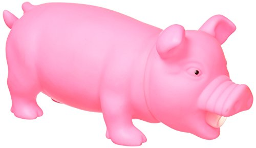 Flash Sales Animolds Squeeze Piggy product image