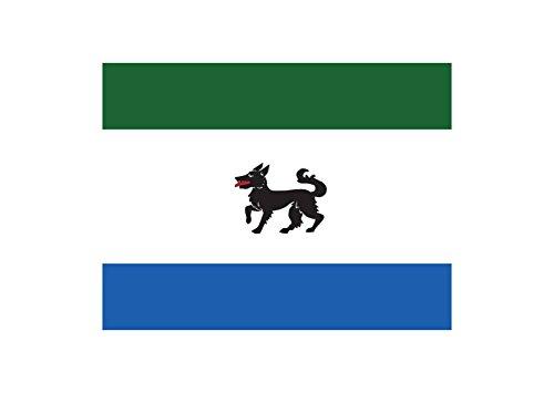 magFlags Bandera Large Oficial Ayuntamiento Peque Zamora   Bandera Paisaje   1.35m²   90x150cm
