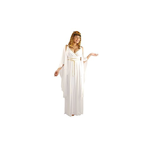 Amscan Womens Cleopatra the Queen Egyptian Halloween Costume- Size Medium (6-8)