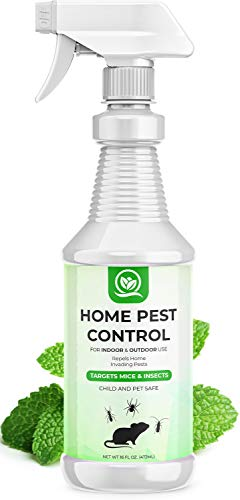 NATURAL OUST Peppermint Oil Mouse Repellent Spray - Roach Ant Spider Bug Insect Killer - Eco Friendly Pest Control to…
