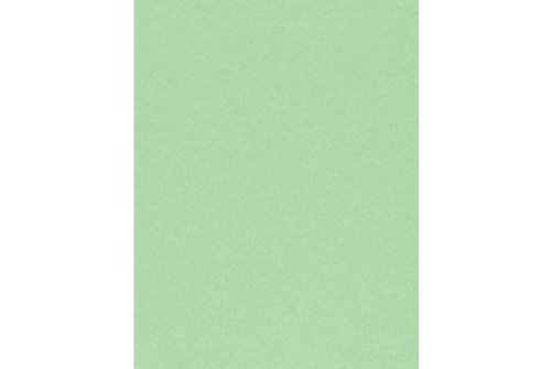 LUXPaper 8.5'' x 11'' Cardstock for Crafts and Cards in 65 lb. Pastel Green, Scrapbook Supplies, 250 Pack (Green)