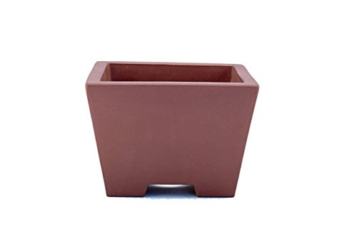 Boutique High End Medium 8.5″ Square Cubic Deep Yixing Zisha Bonsai Pot (CQ424-3) Review