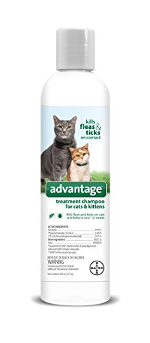 Flea and Tick Treatment Shampoo for Cats and Kittens, 8 oz, Advantage ()