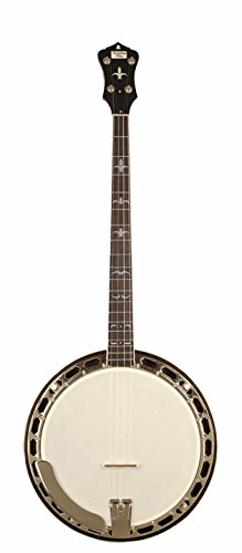 - Recording King RK-T36-BR Madison Tenor Banjo