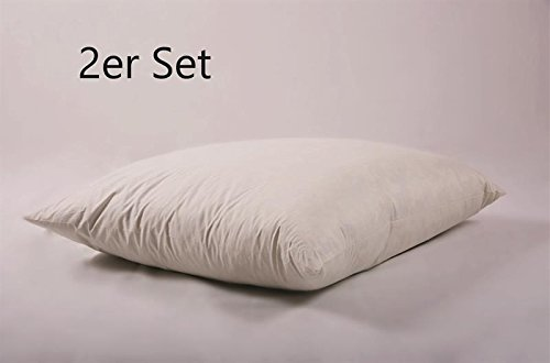 2 Unidades W de Basic 60 x 60 cm sofá cojín Relleno (Fijo ...