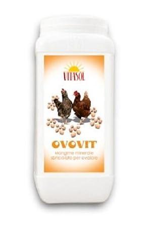 Vitasol - Alimento mineral para producción de huevos Ovovit, para gallinas, 1, 5 kg: Amazon.es: Jardín