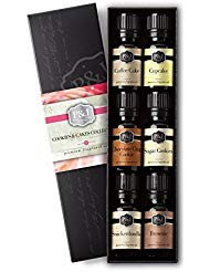 Cookies & Cakes Set of 6 Premium Grade Fragrance Oils - Chocolate Chip Cookie, Sugar Cookies, Cupcake, Brownie,...