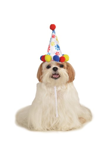 Rubie's Pet Birthday Hat, Small to Medium, Boy Paw Print