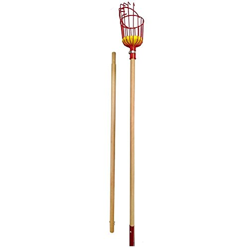 Professional Wooden Fruit Picker with Long Telescoping 8ft Wooden Pole & Fruit Catcher - Reach Fruit up to 15ft without a ladder